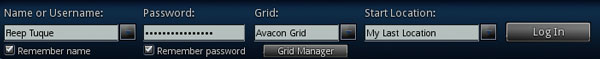 avacon_website_grid_login